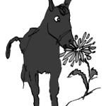 A Donkey Tale