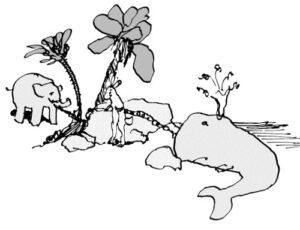 rabbit_whale_elephant